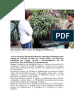 26-02-14 Oaxaca.me Disminuye Dengue