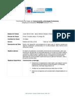 Programa Clases Comunicacion y Estrategia Profesional.pdf
