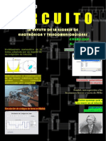 Revista_11