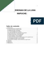 Pepe Articulo Lunas