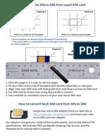 MicroSIM.pdf