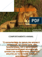 Comportamento Animal - Uergs