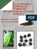 Analisis Fitoquimico Preliminar de Metabolitos Secundarios de La[1]