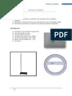 PENDULO SIMPLE.docx