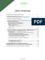 Unidad4_Metabolismo