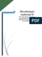 informe de micro en la industria y los prerequisitos.docx