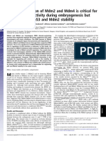 Heterodimerization of Mdm2 and Mdm4 is Critical for Regulating p53 Activity During Embryogenesis but Dispensable for p53 and Mdm2 Stability