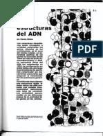 Las Estructuras Del ADN (1)