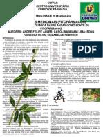 As Plantas Medicinais - Fitofármacos