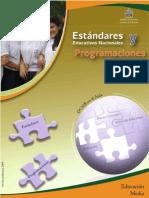 Estándares_Programaciones_Matemáticas_10-11