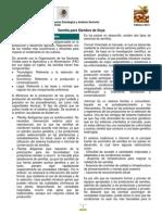 MonografíaSemillaSoya(feb13)