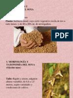 64632623 Manejo Integrado Del Cultivo de Soya