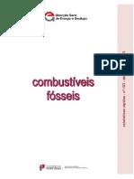 Combustiveis Fosseis 2013