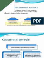 Curs1 - Terenuri cu umflări și contracții mari PUCM
