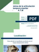 biomecanicadearticulaciontemporomaxilarfinalyaggimarianela-braianzarza-110503204128-phpapp02