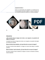 Microcopia I.docx