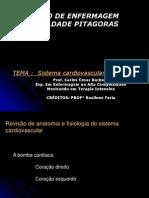 Aula Sistema Cardiovascular[1]