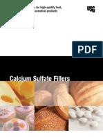 Calcium Sulfate Filler Brochure en IG172