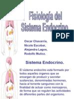 Fisiología del Sistema Endocrino por oscarrete