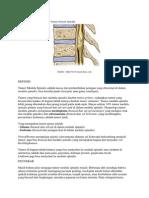 Tumor Medula Spinal