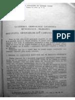Daicoviciu C.& Colaboratorii - Santierul Arheologic Gradistea de Munte-Blidaru-1954-(SCIV,VI,1-2,1955)