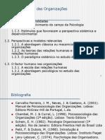 1. Psicologia Das Organiza__es