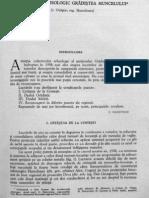 Daicoviciu C.& Colaboratorii - Santierul Arheologic Gradistea de Munte-1958-(MCA,VII,1961)