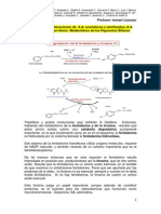 Bioquimica Sistema Digestivo