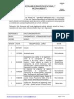 Programa de Salud Ocupacional y Medio Ambiente (1)