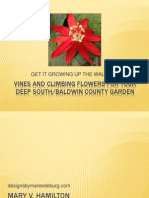 vines and climbers for your baldwin county garden