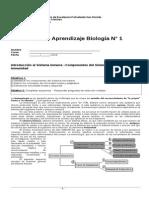 Guía cuarto biología 2014