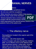 The Cranial Nerves - Lecture 3