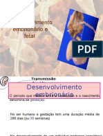 DESENVOLVIMENTO EMBRIONARIO