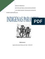 indigenas aparautes