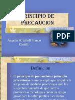 Principio de Precaucion Expocision