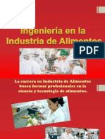 Ingenieria en la Industria en Alimentos