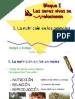 Tema1. La alimentación en los animales