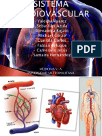 Sistema Cardiovascular(Microbiologia) (1)