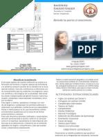 folleto galileo 2010
