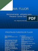 TEMA Fluor