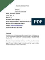 trabajo de investigación 2013-2
