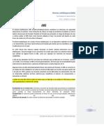 Abs armar pdf.docx