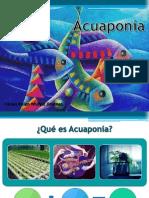 Exposicion_Acuaponia
