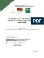 Conocimiento, uso y valoración de la flora vascular de Tierra del Fuego, el ejemplo de Karukinka. Tesis 2010