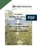 Informe El Picacho