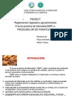PROIECT Reglementari Andrada