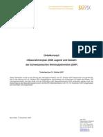 Detailkonzept «Massnahmenplan 2008 Jugend und Gewalt» der Schweizerischen Kriminalprävention (SKP)