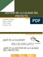 GESTIÓN DE LA CALIDAD DEL PROYECTO