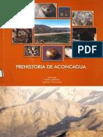 Pavlovic Et Al Prehistoria de Aconcagua