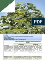 biocombustible (1).ppt